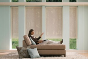 Window Treatment Motorization