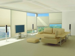 Energy Efficient Shades